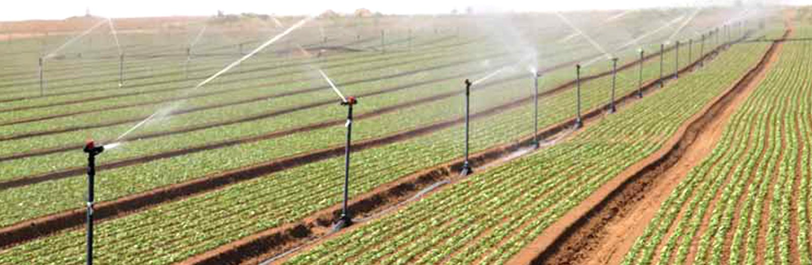 Sprinkler Irrigation Systems Valve Wiring Diagram Water System Installation Prevnext